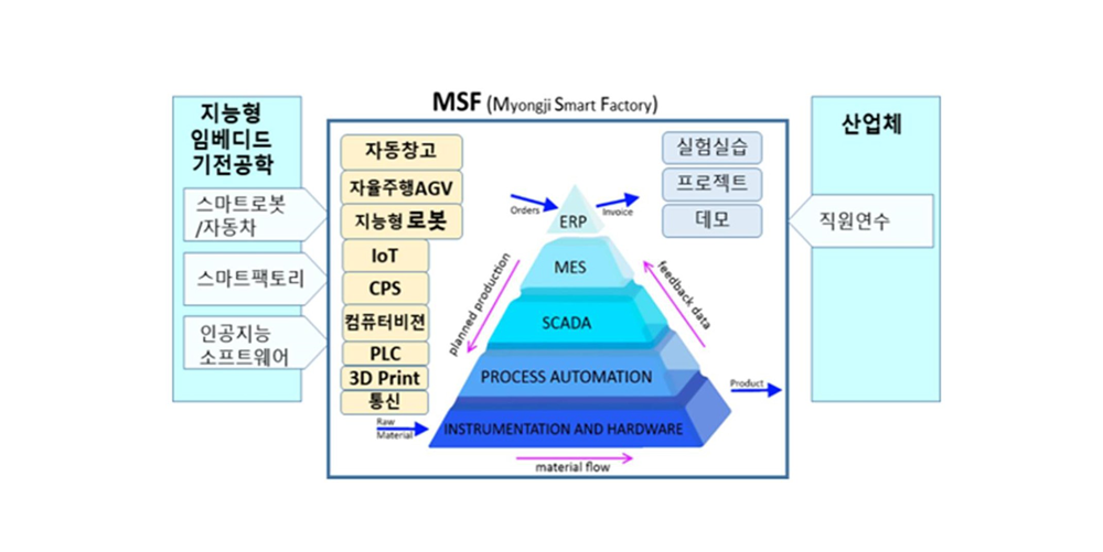 MSF조직도